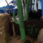 Silk Cactus and Succulent Garden.