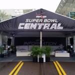 Robelenii and Eureka Palms at Superbowl Central.