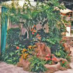 Tropical Theme Display.