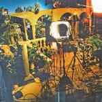 Lights, Cameras, Plants!