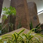 Rock Pillar and Plant Garden at The Double Tree.