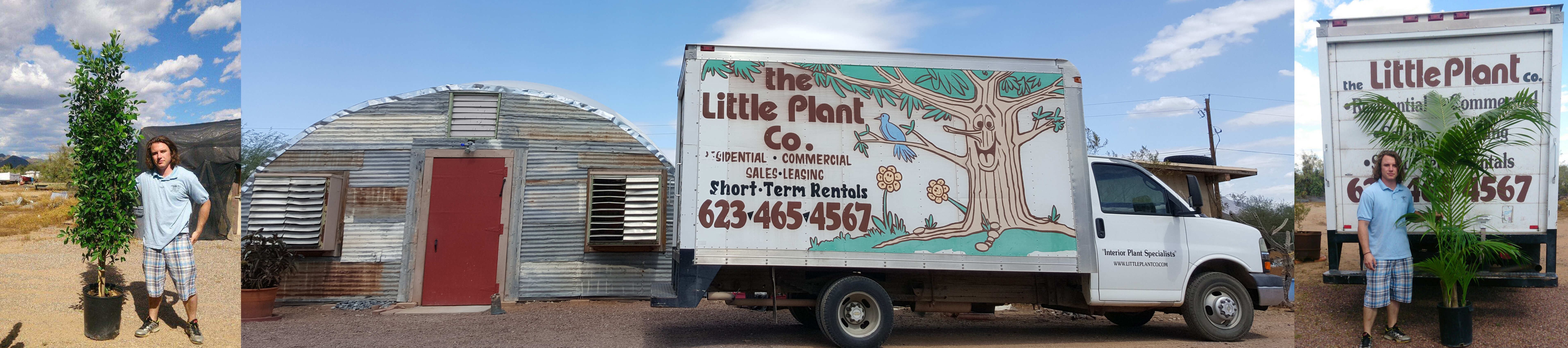 The Little Plant Company